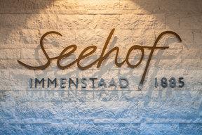 Neues Seehof Logo